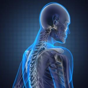 osteopathy image